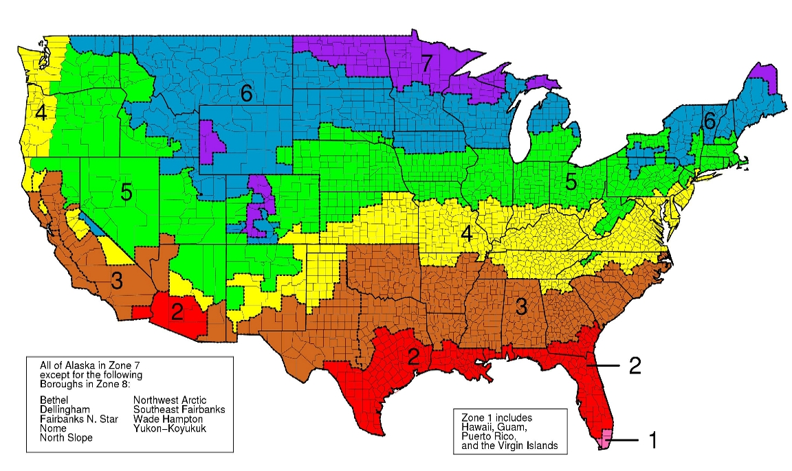 USA Time Zone Map With States With Cities With Clock With ...